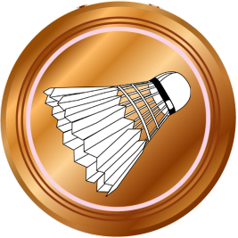 Kviz – bronasta medalja Icon
