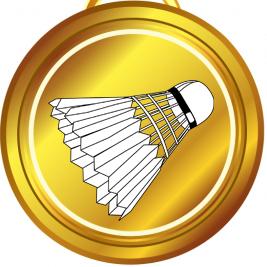 Kviz – zlata medalja Icon